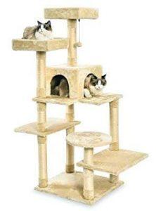 Arbre à chat AmazonBasics - Des chats qui jouent sur l'arbre