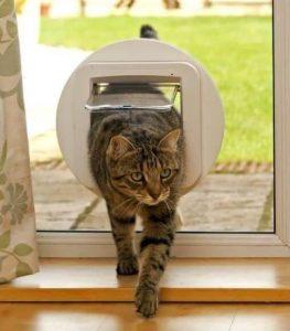 Chatière électronique pour chat