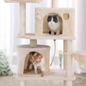 Arbre à chat avec deux chats qui s'amusent